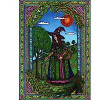 Yule Two, Evergreen (in Colour) Photographic Print