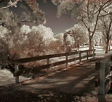 Wooden Bridge by yolanda