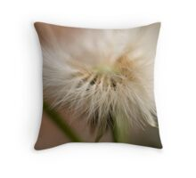 Quietly Soothing Throw Pillow