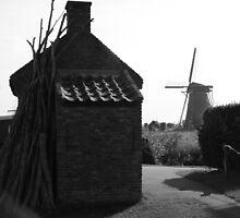 The Kinderdijk by Aaron  Pegram