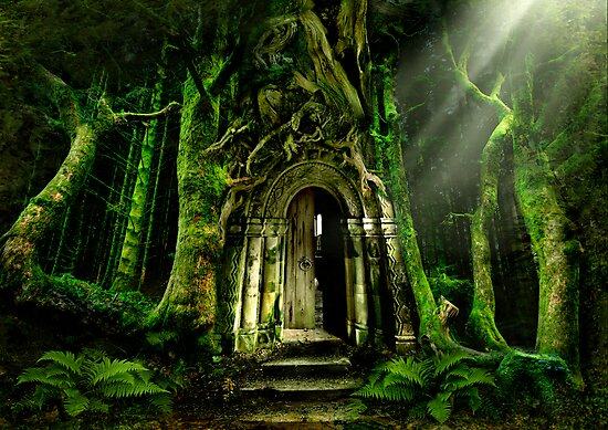 The Emerald Forest by Celtic Mystery