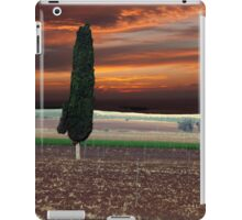 Stormy Day Cypress iPad Case/Skin