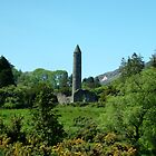 St.Kevin's Church and Round Tower. by Alan Hogan