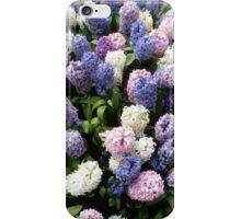 Assorted hyacinths iPhone Case/Skin