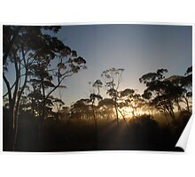 Mount Holland Dawn Poster