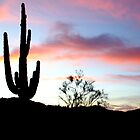 Sentinel Saguaro by Freese