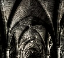 In the shadows by Linda  Morrison
