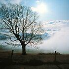 MORNING FOG by Chuck Wickham