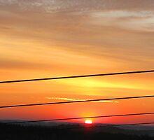 Zipline Sunrise by Taylor Sawyer