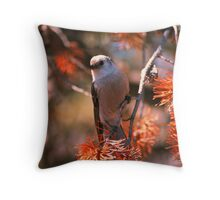 GRAY JAY,YELLOWSTONE NP Throw Pillow
