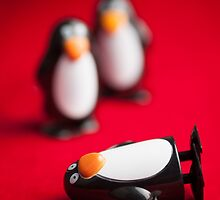 Penguins by Mark Fearon