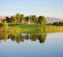 REFLECTIONS ON THE WATER by Carol Barona
