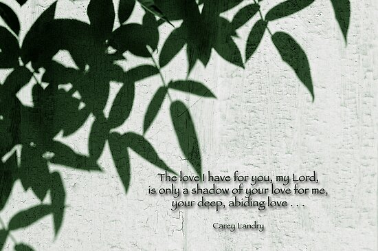Only a shadow . . . by Bonnie T.  Barry