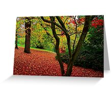 Autumn Is A Painter Greeting Card