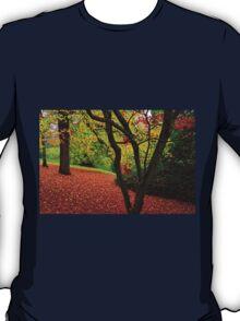 Autumn Is A Painter T-Shirt
