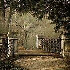 My secret garden III. by Csaba Jekkel