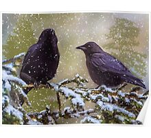 Winter Crows Poster