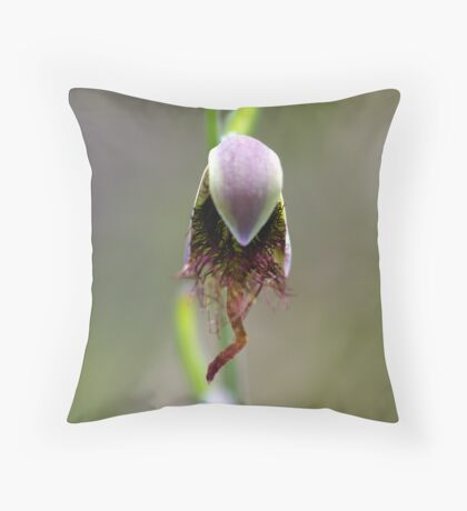 """Red Beard Orchid """"Calochilus paludosus"""" Throw Pillow"""