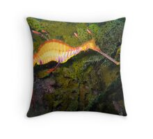 Weedy Sea Dragon Throw Pillow