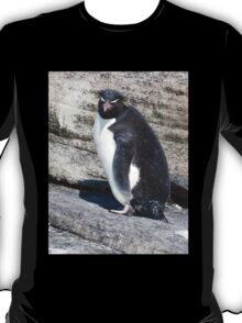 Curious Rockhopper T-Shirt