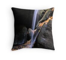 at the base of the falls Throw Pillow