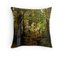 light on fall Throw Pillow