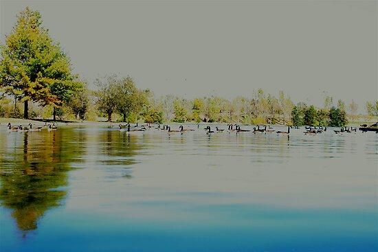 Boys Town Lake by Tim Wright