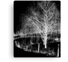 Night Willow Canvas Print