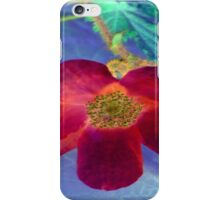 Wild Red Rose-Available As Art Prints-Mugs,Cases,Duvets,T Shirts,Stickers,etc iPhone Case/Skin