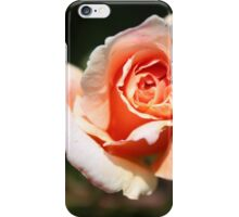 A Rose of Peach iPhone Case/Skin