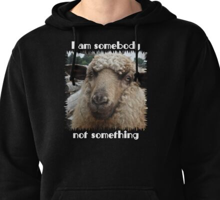 """I am somebody, not something"" Pullover Hoodie"