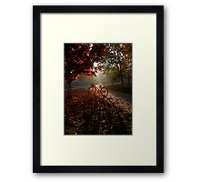 Morning Cruise Framed Print