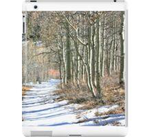 Aspen Strand iPad Case/Skin