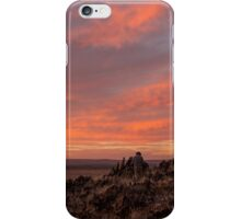 Photographer's Delight iPhone Case/Skin