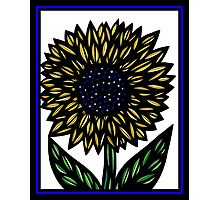 Percolate Flowers Yellow Blue Black Photographic Print