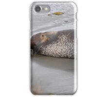 its been a rough life iPhone Case/Skin