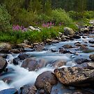 Rock Creek, Eastern Sierra by Justin Mair