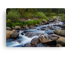 Rock Creek, Eastern Sierra Canvas Print