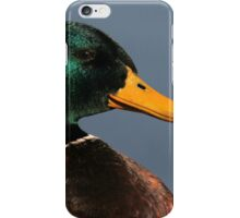 Portrait of a Mallard Drake iPhone Case/Skin