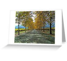Napa Valley Autumn Lane Greeting Card