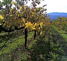 Autumn Vines by LeeRoberts