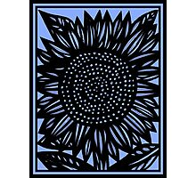 Brevity Flowers Blue Black Photographic Print