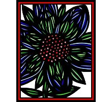 Caliginous Flowers Red Green Blue Photographic Print