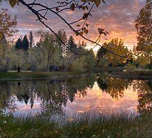 Les' Lake, Twizel by Mel Brackstone