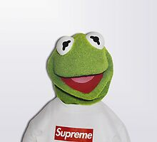 Kermit for Supreme 2 Media Cases, Pillows, and More. by premebitch