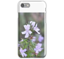 Australian Rosemary Flower iPhone Case/Skin