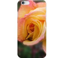 In Dreams - Gorgeous Peach Rose iPhone Case/Skin