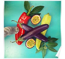 Chilli Paw Poster