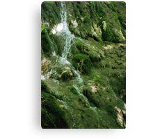 Falls at the Natural Bridge Canvas Print