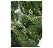 Falls at the Natural Bridge Poster